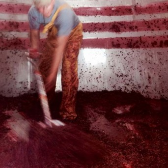 Artistic shot of cleaning grape skins from a fermentation tank